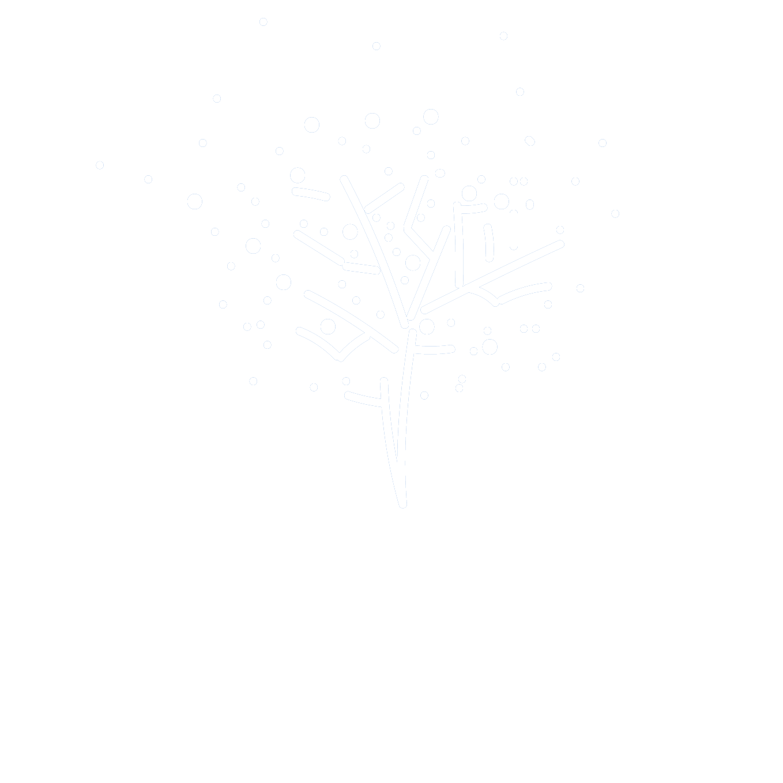 Paul Reynolds Photography